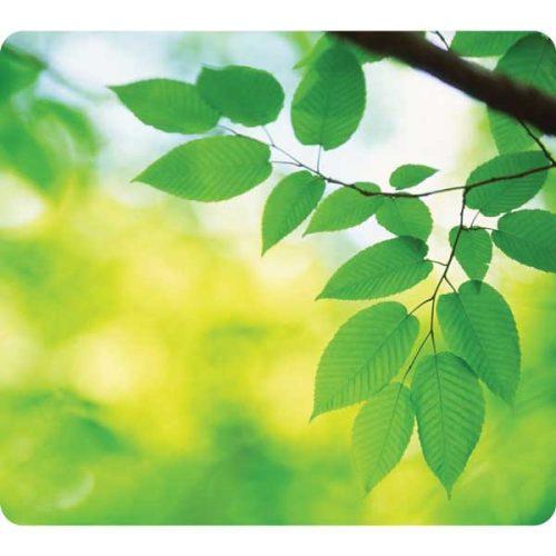 Hiirimatto Fellows Eco Earth lehdet